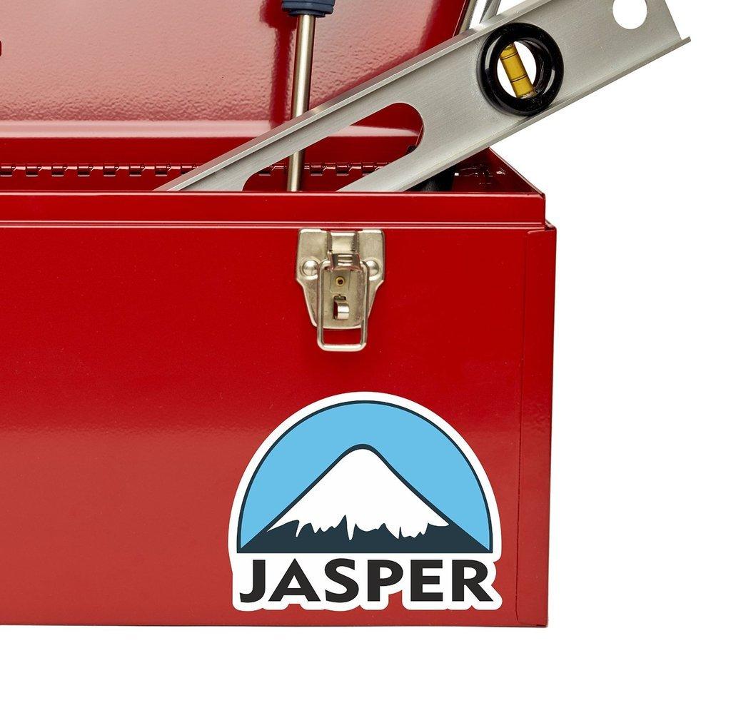 2 x 10cm//100mm Jasper Ski Snowboard Vinyl Sticker Decal Laptop Travel Luggage Car iPad Sign Fun #5152