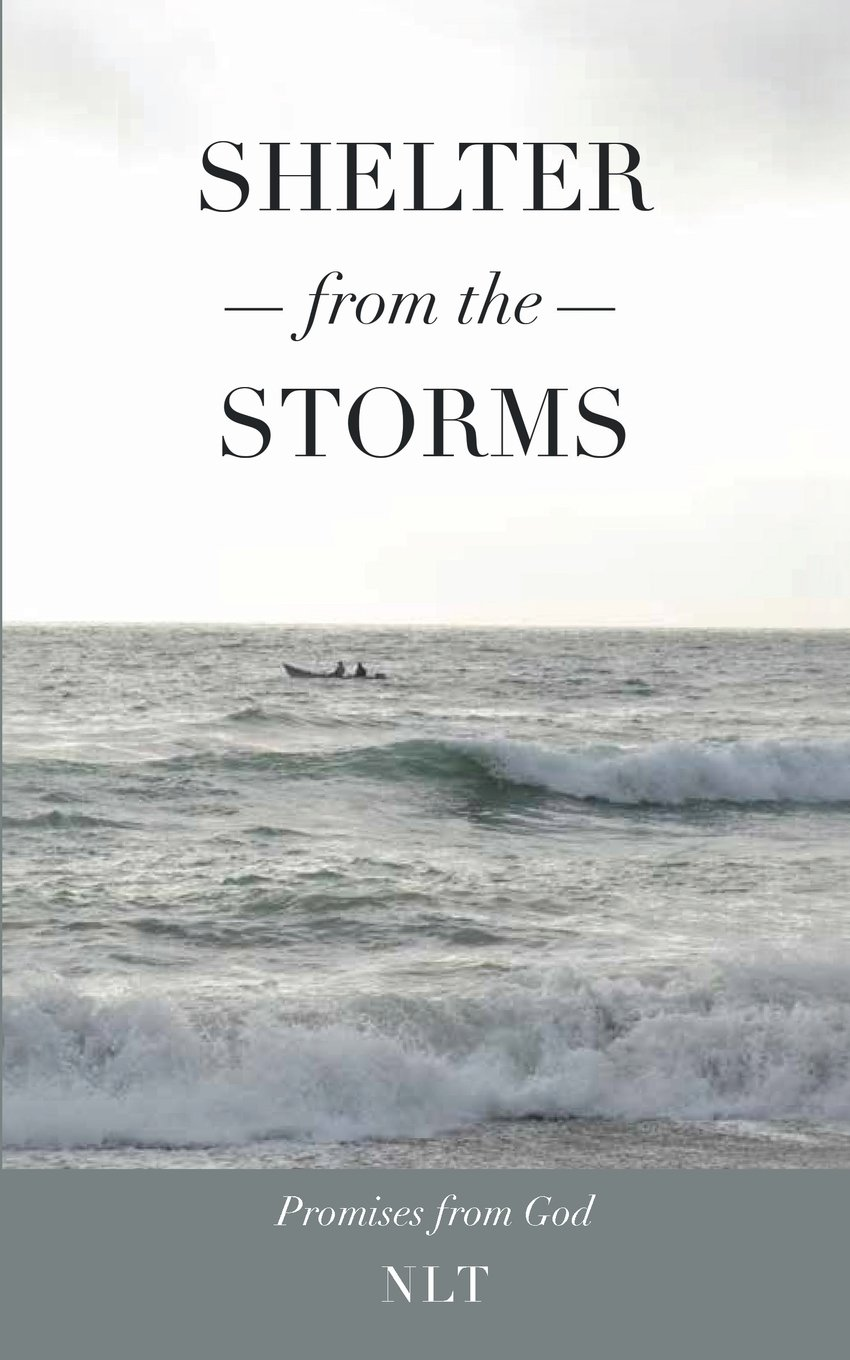 Shelter From the Storms; Promises from God pdf epub