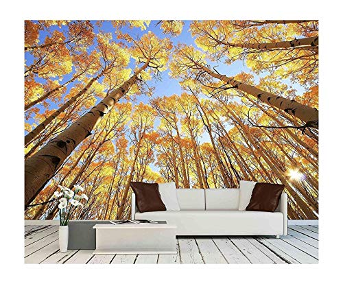 wall26 - Aspen Trees with Fall Color, San Juan National Forest, Colorado, USA - Removable Wall Mural | Self-Adhesive Large Wallpaper - 100x144 inches