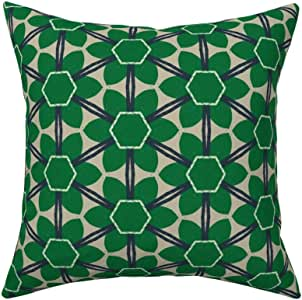 Amazon.com: Roostery Throw Pillow, Bold Retro Modern
