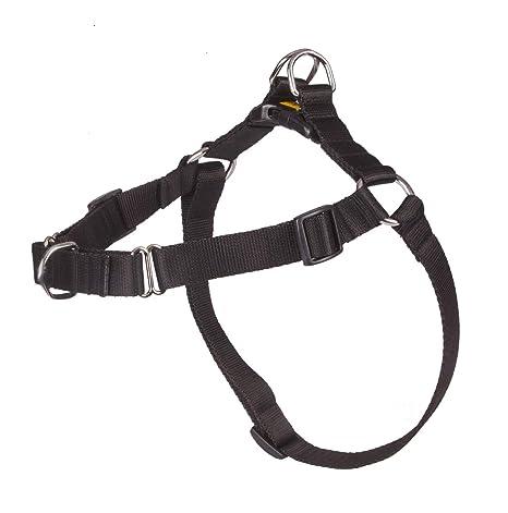 Dingo 94463 Easy Walk: Amazon.es: Productos para mascotas