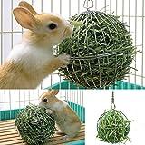 Stainless Steel Feed Hanging Ball Rabbit Pet Treat Dispenser Toy 8cm