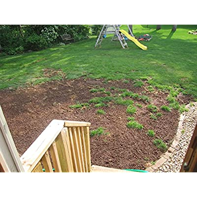 X-Seed 440AS0086UCT185 Quick & Thick Plus Lawn Repair Lawn Repair, 4.5 lb: Garden & Outdoor