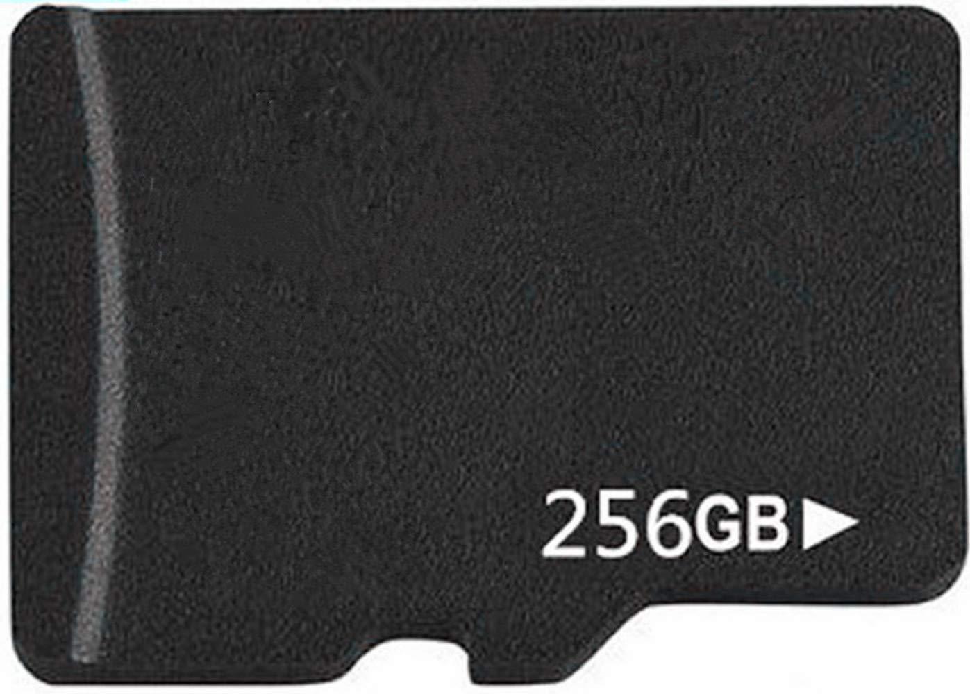 Karenon Tarjeta Micro SD 256 GB, microSDXC 256 GB Class 10 Tarjeta de Memoria + Adaptador (FT135-KY1) (256GB)