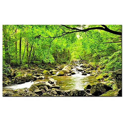 Canvas Forest Green - sechars - Green Morning Sun Forest Picture Print on Canvas - Forest Stream Lake Wall Art - Framed and Ready to Hang - Modern Home Decor- 24