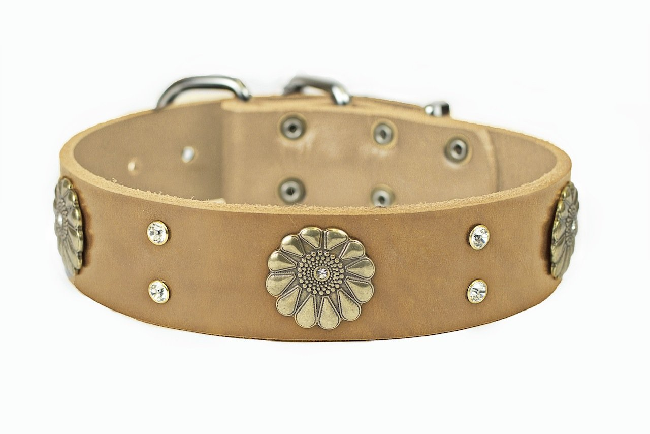 Dean and Tyler  FLEUR  Dog Collar With Nickel Buckle  Tan  Size 76cm By 4cm Width. Fits neck size 28 Inches to 32 Inches.