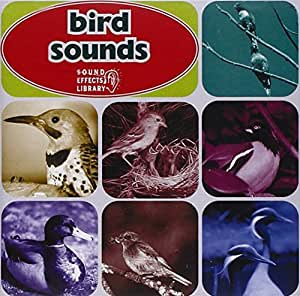 how to make bird sounds with your mouth