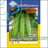 Chinese Bitter Melon Green Skin Seeds (FOO GWA) by Stonysoil Seed Company