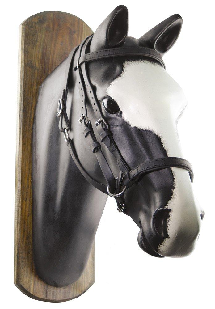 Black  FULL Black  FULL Umbria Riding Biothane Bridle Horse Ball C Reins