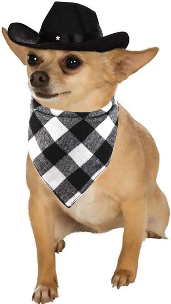 X large Cowboys pet scarf
