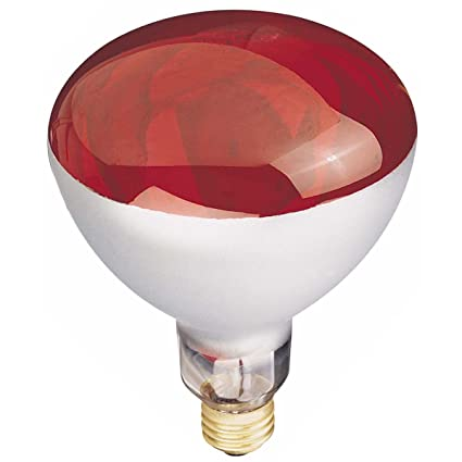 Delightful Globe Electric 03917 250 Watt R40 Incandescent Heat Lamp Light Bulb, E26  Base,