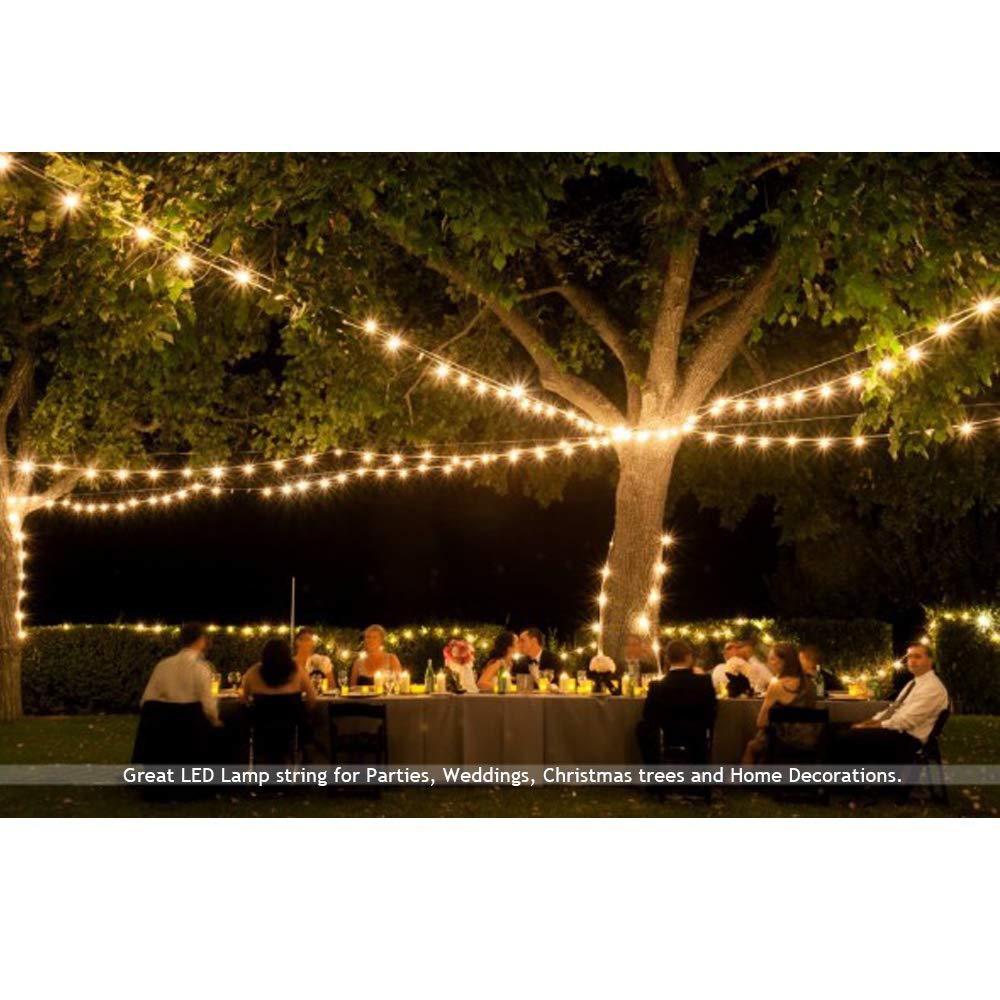 Amazon.com: Guirnalda de luces LED decorativas para ...