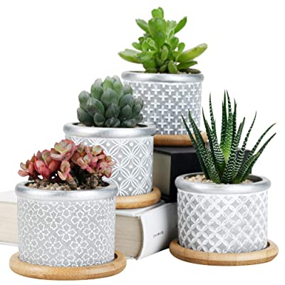 SUN-E Cement Succulent Planter Pots,Cactus Plant Pot Indoor Small Concrete Herb Window Box Container for Home and Office Decor Birthday Wedding Gift Idea With Bamboo Tray Grey 4In Set 2.75Inch-022-023: Garden & Outdoor