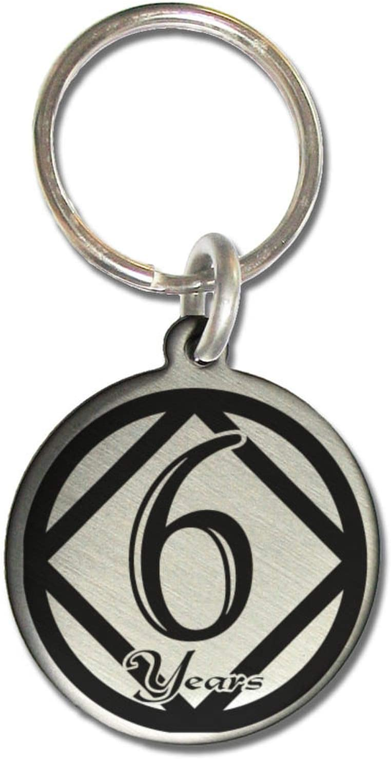 Black /& Silver NA//AA Bike Chain Medallion Holder Key Ring Narcotics Anonymous