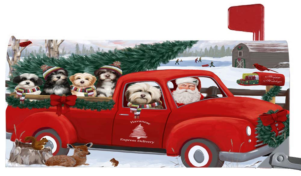 Doggie of the Day Magnetic Mailbox Cover Christmas Santa Express Delivery Havaneses Dog MBC48326