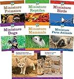 Mini Animal Marvels
