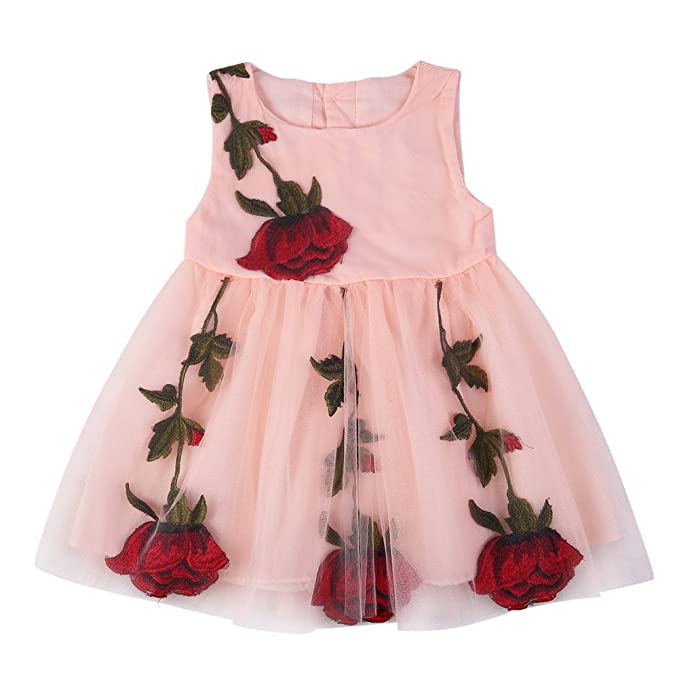 d04d2065735d1 BOBORA Baby Girls Rose Dresses Printed Flower Sleeveless Dresses,Pink-1,Large  /