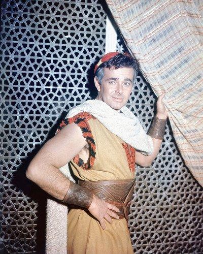 Stuart Whitman in period costume 16x20 Poster ()