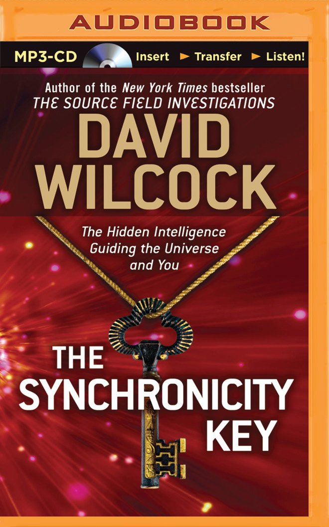 Synchronicity Key, The: David Wilcock: 9781491512494: Amazon