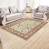 Living room bedroom carpet [foyer carpet] Modern fashion simple carpet-F 82x122cm(32x48inch)