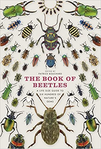 Amazon com: The Book of Beetles: A Life-Size Guide to Six