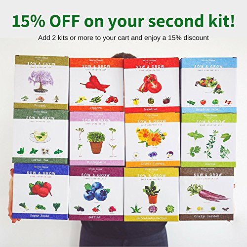 Grow 5 Herbs From Organic Seeds with Nature's Blossom Herb Garden Starter Kit - Fresh Thyme ; Basil ; Cilantro ; Parsley and Sage. Planters Set W/All a Gardener Needs for Growing Indoor Plants by Nature's Blossom (Image #4)