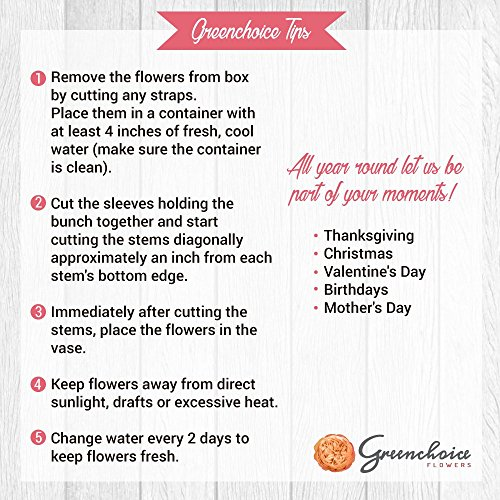 Review Greenchoice – Fresh Cut