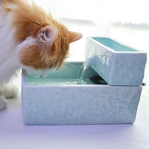 Fuente para Gatos, Fuente De Agua De Cerámica para Mascotas Perros, Gatos Automáticas Dispensador De Agua con Filtro, Tranquilo (Color : Light Green, Size : 1.9L): Amazon.es: Productos para mascotas
