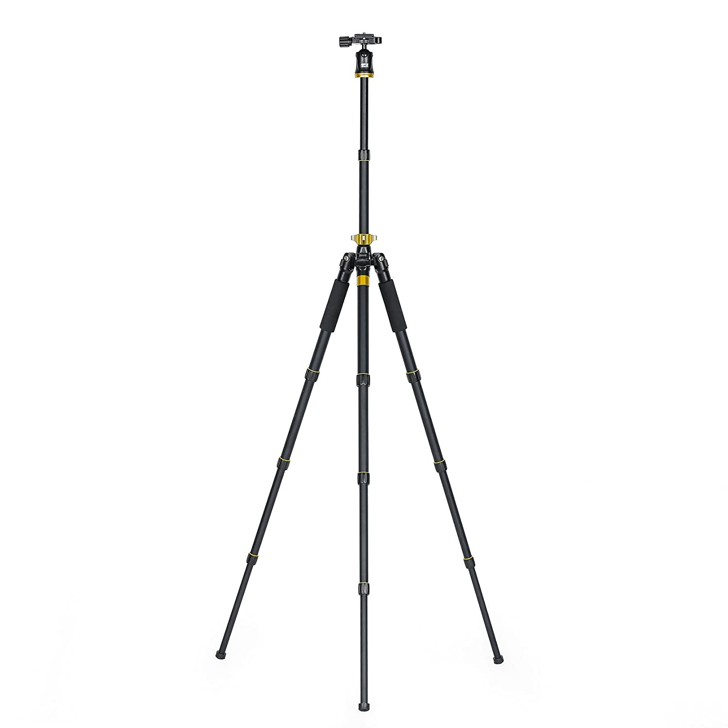 Amazon.com : St -111 Photo Video Tripod/Monopod with Ball Head. : Camera & Photo