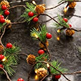 Funpeny Christmas PineCones String Lights, 6.56Ft