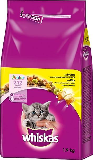 whiskas - Comida de Gato, Comida Seca para Gatitos pequeños, Diferentes tamaños: Amazon.es: Productos para mascotas