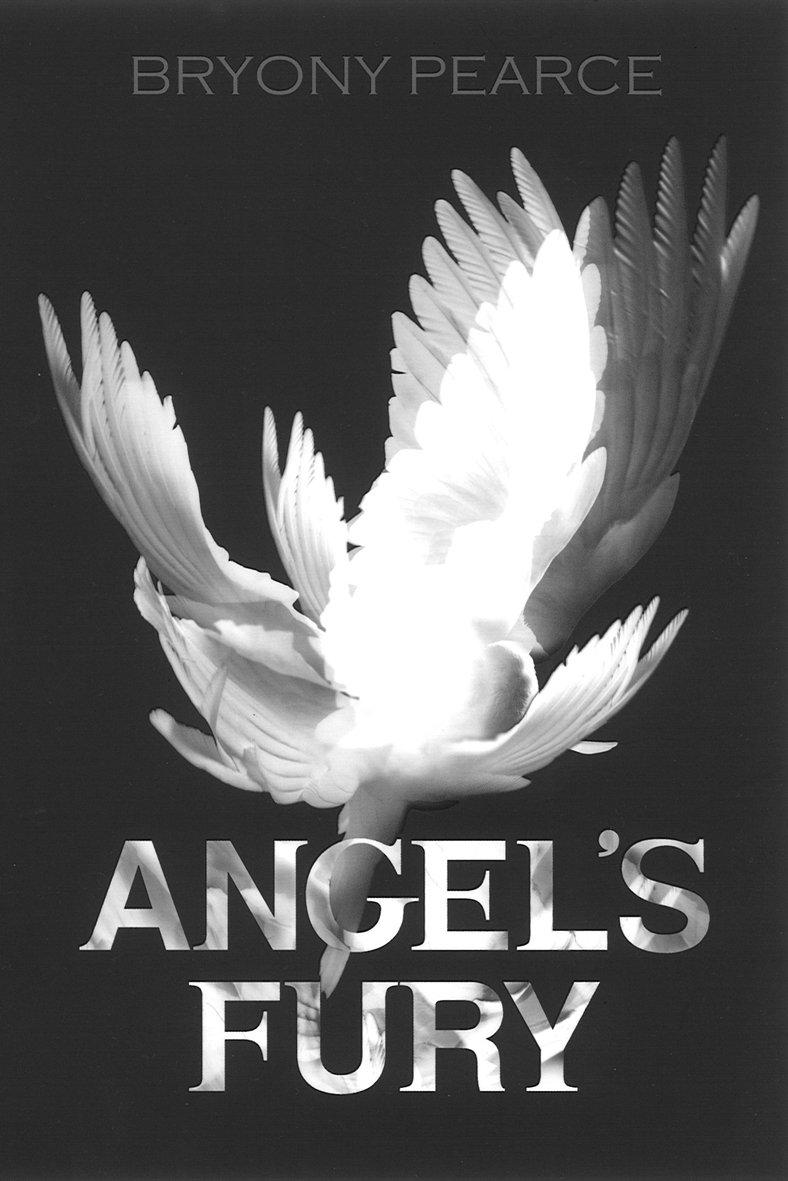 Read Online Angel's Fury PDF