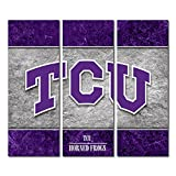 Texas Christian University TCU Horned Frogs Canvas Wall Art Triptych Double Border Design (48x54 Triptych)