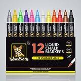 neon colour paints - Woodsam 12 Pack Liquid Chalk Markers- Neon Color Paint- Erasable Non-Toxic Erase Pens Set Best For Kids Art – 20 Chalkboard Glass Labels & 2 Reversible Tips Included