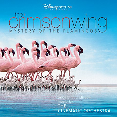 Arrival of the Birds (The Cinematic Orchestra Arrival Of The Birds)