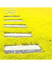 lamta1k 500Pcs Césped Semillas Césped Perenne Jardín Cancha de Campo Campo Villa Calidad de la Planta al Aire Libre y Alta tasa de Supervivencia - Semillas de Hierba Amarilla