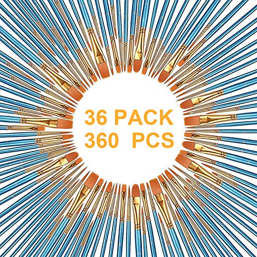 360 Piece Set - AOOK 360 Pieces Paint Brush Set Professional Paint Brushes Artist for Watercolor Oil Acrylic Painting (36-Pack 360Pcs)