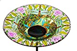 "Evergreen Dragonfly Glass Bird Bath Bowl with Metal Stake - 10""L x 10' W x 26.75' H"
