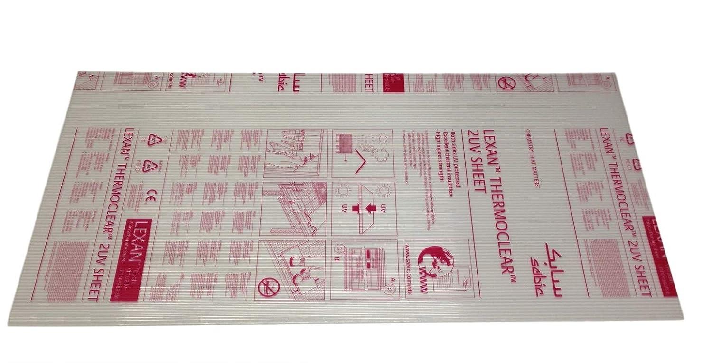 Lexan Thermoclear Serre en polycarbonate 1,5 x 0,7 m