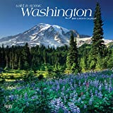 Washington, Wild & Scenic 2019 12 x 12 Inch Monthly Square Wall Calendar, USA United States of America Pacific West Coast State Nature (Multilingual Edition)