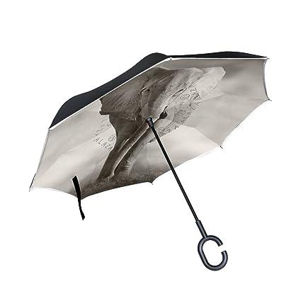 Amazon.com: Elefante africano patrón de impresión paraguas ...