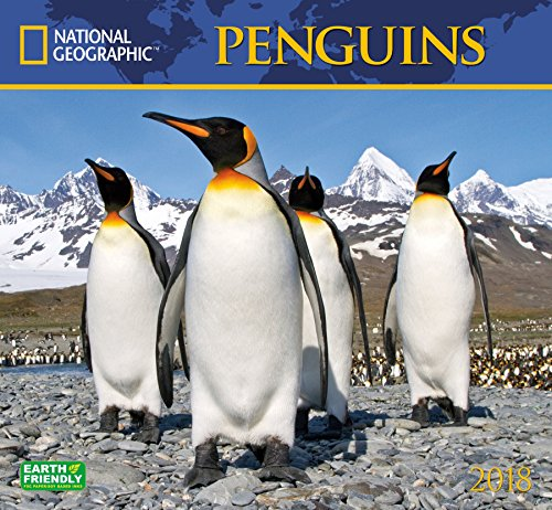 National Geographic Penguins 2018 Wall Calendar