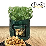 Potato Grow Bags (2-pack) - Zilong 7 Gallon Garden Planter Bag for Growing Vegetables: Tomato, Potato, Carrot, Onion - with Access Flap for Harvesting and Handles