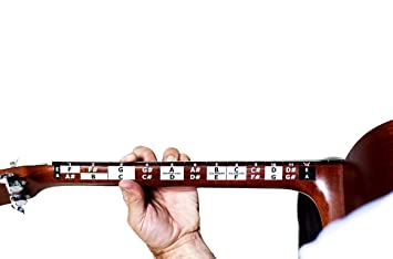 Aprender Guitarra Fretboard Nota - Adhesivos 25.5 escala - (2 unidades), color blanco: Amazon.es: Instrumentos musicales