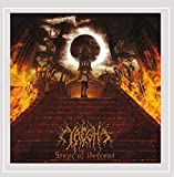 Steps of Descent [Explicit]