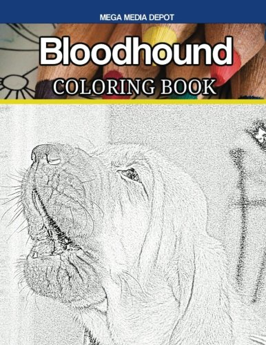 Bloodhound Coloring Book