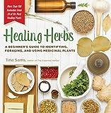 Healing Herbs: A Beginner's Guide to