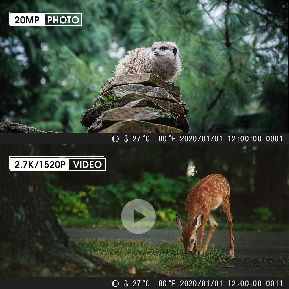 COOLIFE C/ámaras de Caza 2.7K 20MP HD Fototrampeo Distancia de Disparo de hasta 35 m Velocidad de Disparo 0.1s C/ámara de Caza Nocturna 46 pcs IR Leds Admite hasta 512G