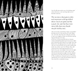 The Little Mermaid by Hans Christian Andersen & Yayoi Kusama: A Fairy Tale of Infinity and Love Forever