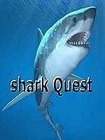 shark Quests